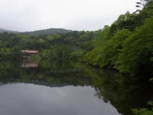 八千穂高原(白駒の池)